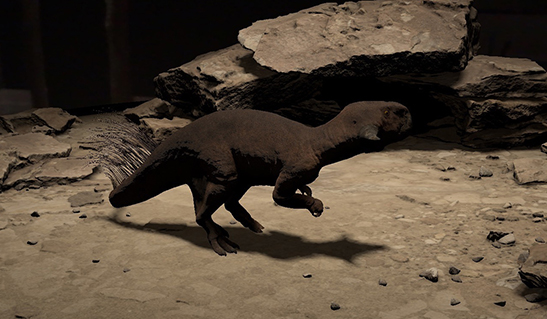 Psittacosaurus comes to life