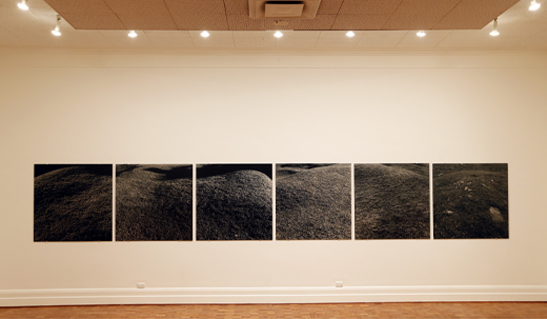 Temp_Exhibitions_-_Anne_Ferran