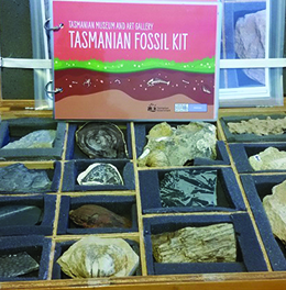 Fossil Kit