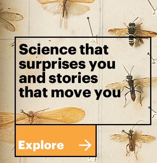 Science that surprises you and stories that move you