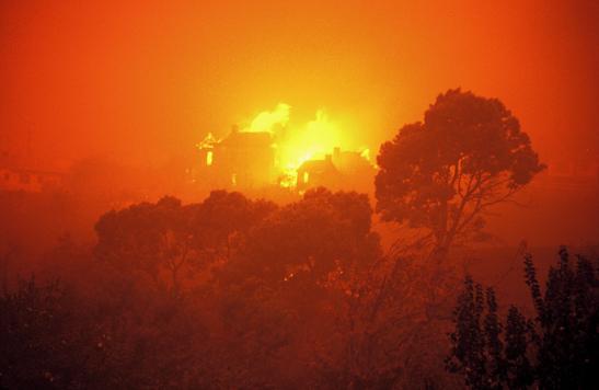 1967 Bushfires