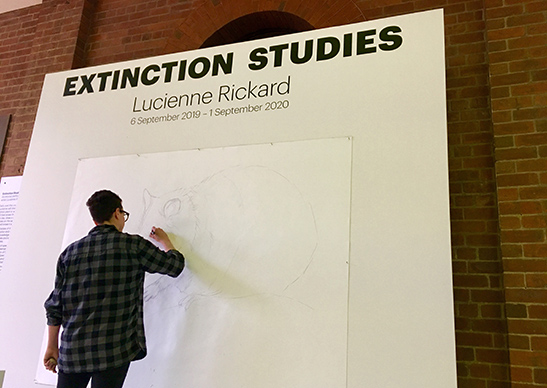 Lucienne Rickard: Extinction Studies