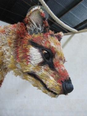 Thylacine head