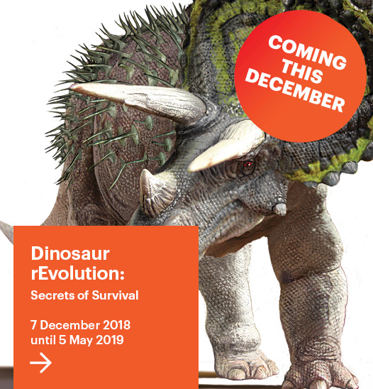 Dinosaur rEvolution Coming Soon