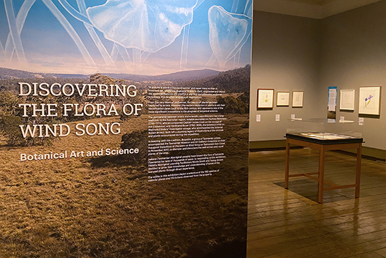 Wind Song exhibition title wall